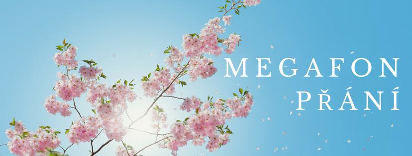 Facebook - Megafon prani - Myslenkou kuspechu